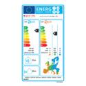 Étiquette Énergétique - AOYG 18 LAT3.UE